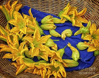Photograph - Squash Blossom Basket by Dee Flouton