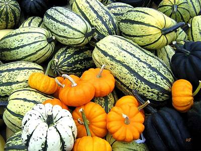 Photograph - Squash Harvest by Will Borden