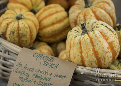 Farmstand Photograph - Squash by Juli Scalzi