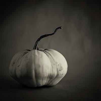 Photograph - Squash by Tim Nichols