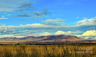 Photograph - Squaw Butte From The West by Robert Bales