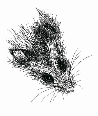Drawing - Squeak The Mouse by MM Anderson