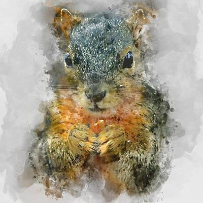 Squirrel Watercolor Painting - Squirrel Colorful Portrait 2 - By Diana Van by Diana Van