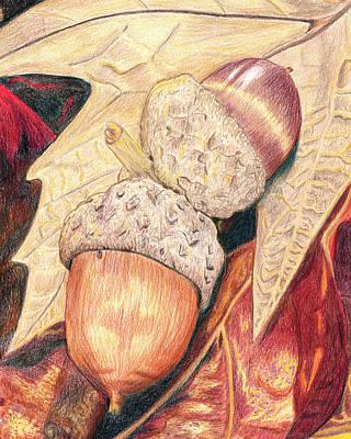 Fallen Leaf Drawing - Squirrel Food by Stacie Dowdy