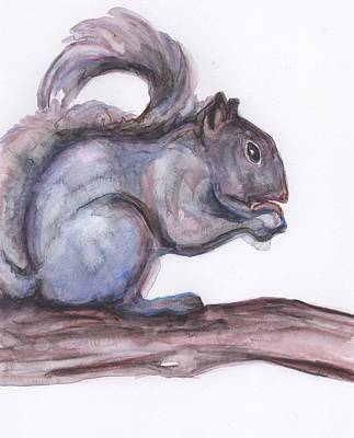 Squirrel Watercolor Painting - Squirrel In Watercolor by Anne Seay