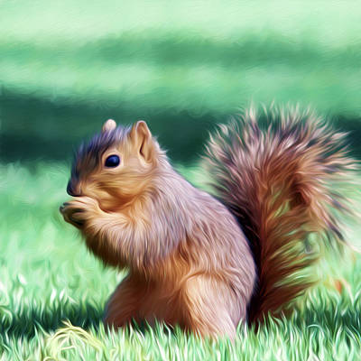 Photograph - Squirrel Oil Paint Filter 72516 by Rospotte Photography