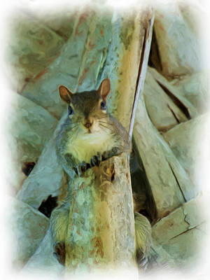 Summer Trends 18 - Squirrel on a Ledge by Jill Nightingale