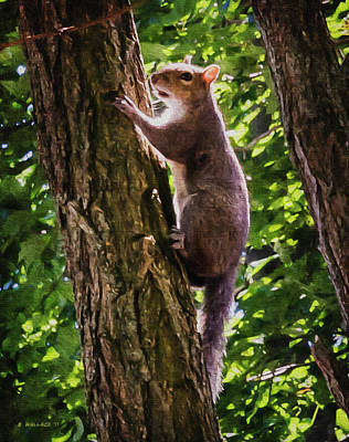 Digital Art - Squirrel On Tree - Paint Fx by Brian Wallace