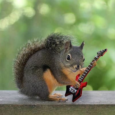 Squirrel Playing Electric Guitar Art Print