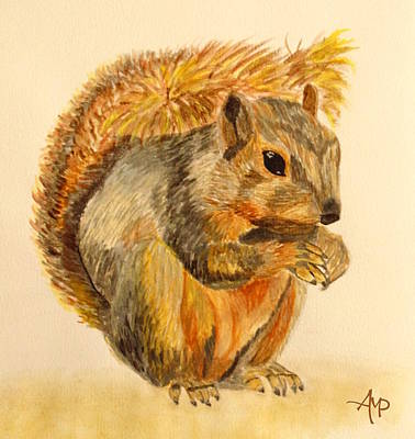 Squirrel Watercolor Painting - Squirrel Watercolor by Angeles M Pomata