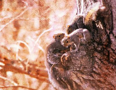 Wildlife Photograph - Squirrels - A Family Affair Vi by Aurelio Zucco