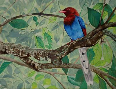 Sri Lanka Blue Magpie Original by Dhammika Bandara