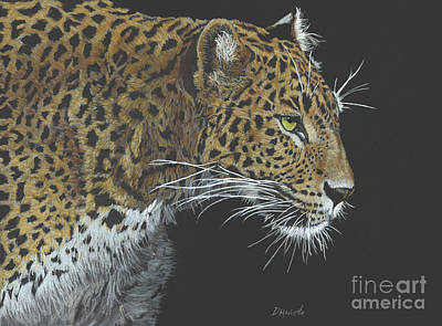 Painting - Sri Lanka Leopard by Diane Marcotte