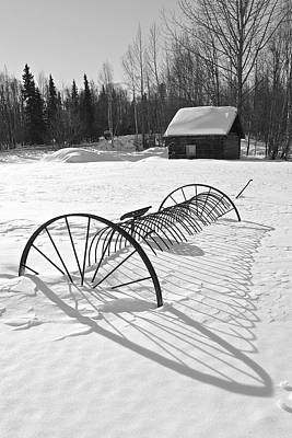 Old Farm Equipment Photograph - Srings Shadow by Ed Boudreau