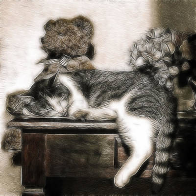 Quietly Photograph - Ssssleeeping by Joachim G Pinkawa