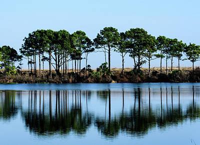 Photograph - St Andrews State Park by Randy J Heath