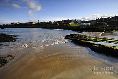 Andrew Photograph - St Andrews by Nichola Denny
