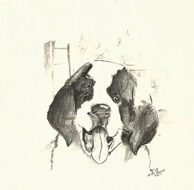 st bernard drawings fine art america
