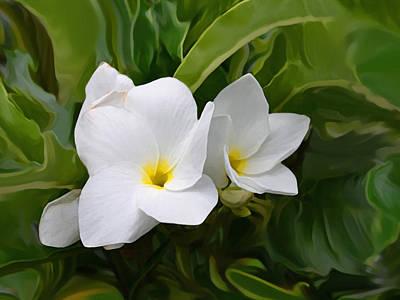 Photograph - St. Cecelias' Floral Show by Dennis Buckman