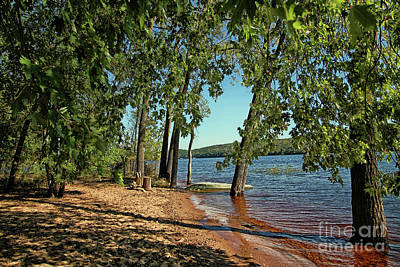 St Croix River Shoreline Art Print