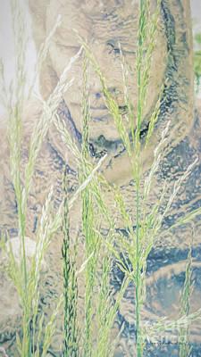 Photograph - St Francis by Jean OKeeffe Macro Abundance Art