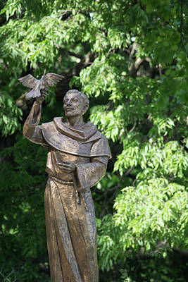 Photograph - St Francis Of Assisi by Pamela Williams