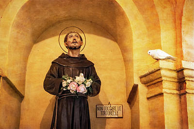 Photograph - St. Francis Statue And Live Doves by Carolyn Derstine