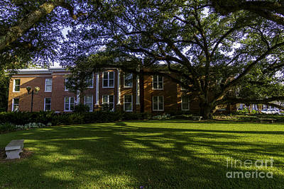 Photograph - St. Francisville Courthouse Side View by Ken Frischkorn