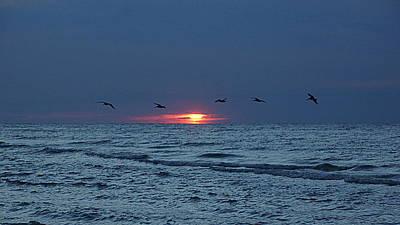 St. George Island Sunrise Art Print by Paul  Wilford