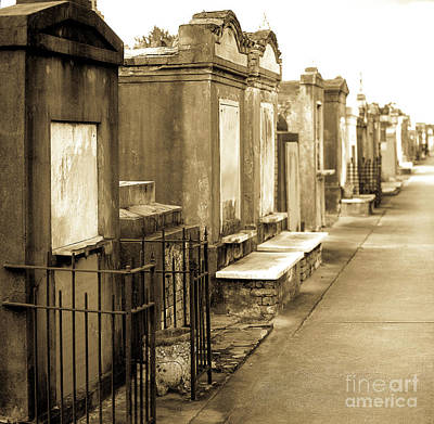 New Orleans Cemeteries Photograph - St Louis   by Baltzgar