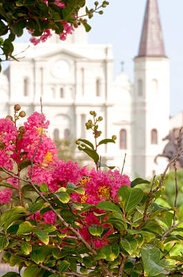 Flora And Fauna Photograph - St. Louis Cathedral Jackson Square New Orleans by Deborah Squires