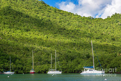 Photograph - St Lucia Boats by Brian Jannsen