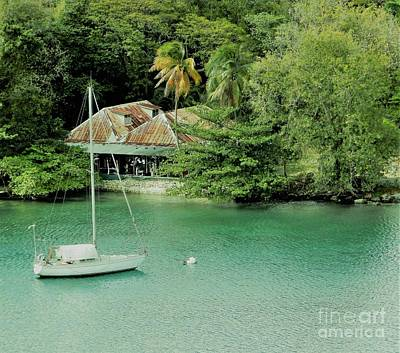 Photograph - St. Lucia Mooring by Neil Zimmerman