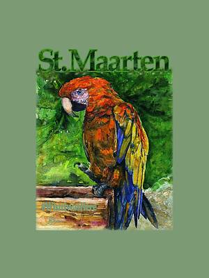 Painting - St. Maarten Shirt by John D Benson