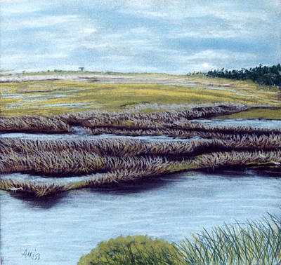 Pastel - St. Marks Marshland by Jan Amiss