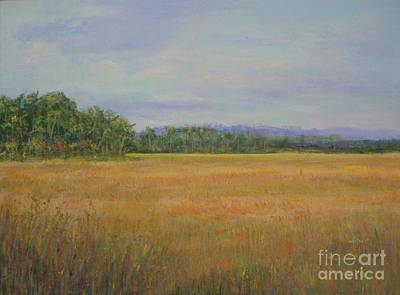Painting - St. Marks Refuge I - Autumn by Gail Kent
