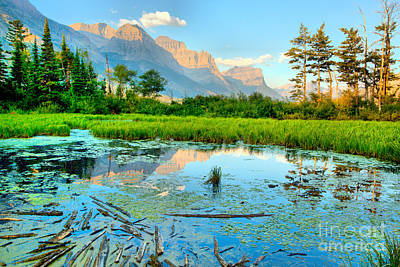 Photograph - St Mary Peak Hazy Reflections by Adam Jewell