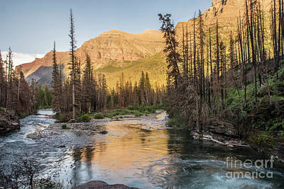 Photograph - St. Mary River by Jason Kolenda