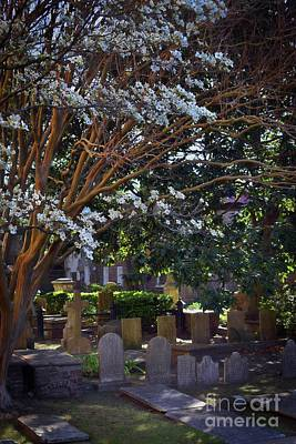 Photograph - St. Phillips Cemetary by Skip Willits