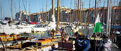 Photograph - St Tropez Harbor by Lainie Wrightson