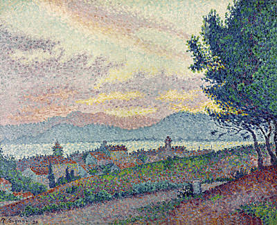 Pointillist Painting - St Tropez Pinewood by Paul Signac
