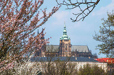 Photograph - St Vitus Cathedral In Spring Time. Prague by Jenny Rainbow