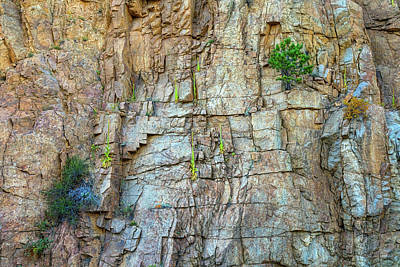Photograph - St Vrain Canyon Wall by James BO Insogna