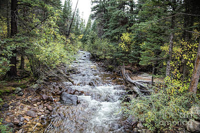Photograph - St. Vrain by Lynn Sprowl