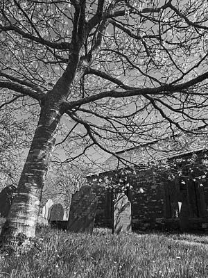 Photograph - St Werburgh Church, Warbstow by Bear R Humphreys