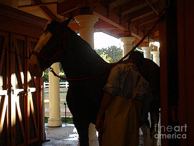 Photograph - Stable Groom - 2 by Linda Shafer