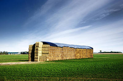 Stack Of Hay Bales Art Print by Donald  Erickson