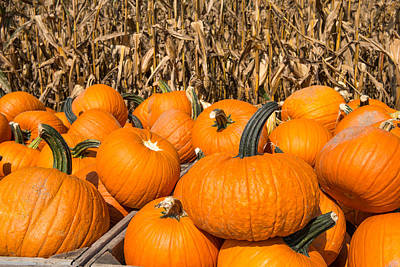 Photograph - Stacked Pumpkins by Joye Ardyn Durham
