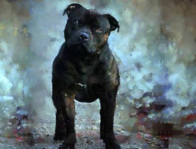 Bull Terrier Mixed Media - Staffy  by Janice MacLellan