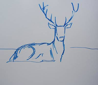 Drawing - Stag With Antlers Lying Down Blue Line Drawing by Mike Jory